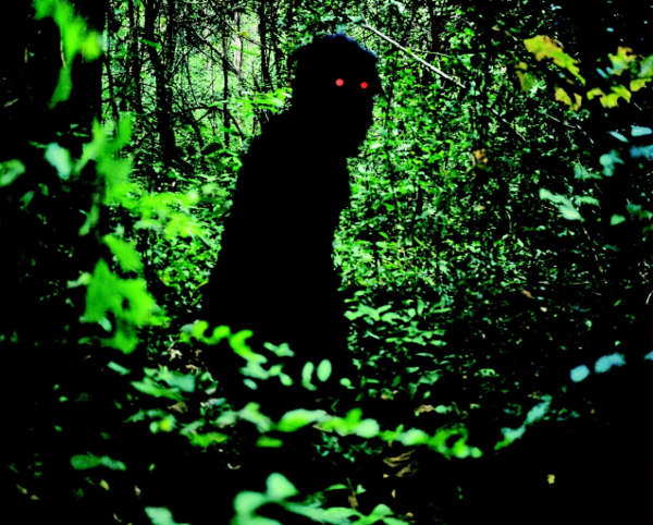 uncleboonmee_review