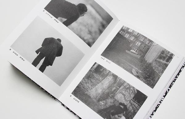 davidshrigleybook12