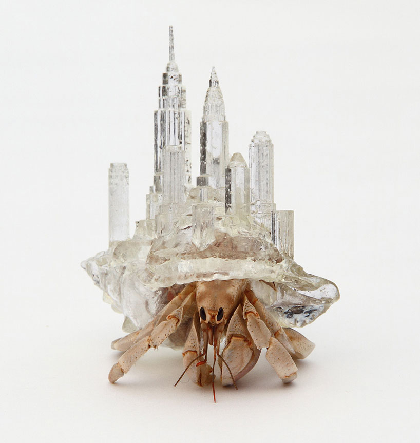 aki-inomata-hermit-crab-shells-designboom-03