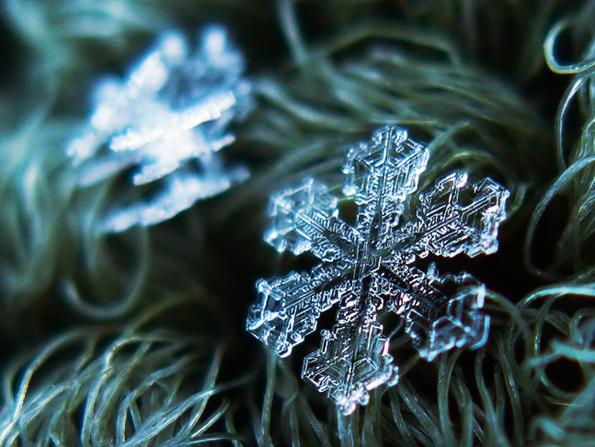 snowflakes-closeup-2