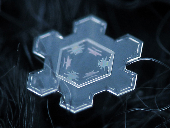 snowflakes-closeup-3