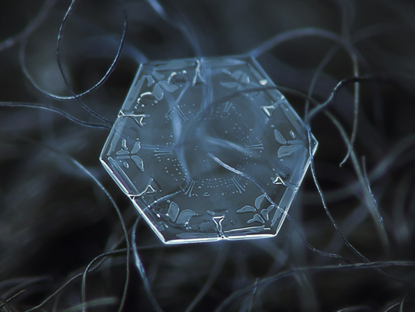 snowflakes-closeup-4