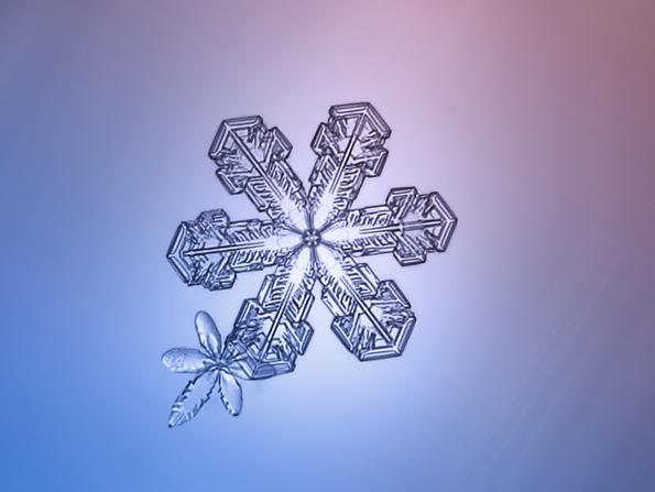 snowflakes-closeup-6