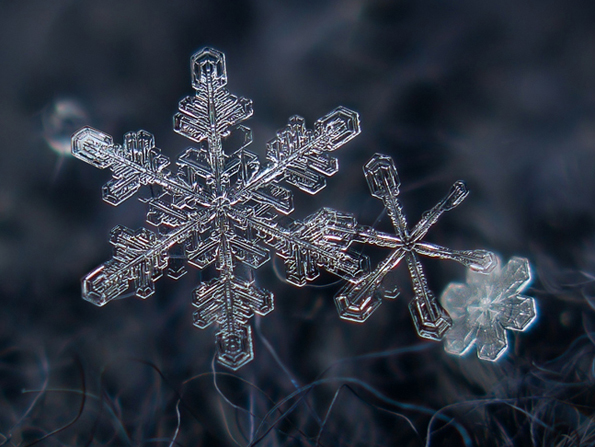 snowflakes-closeup-8