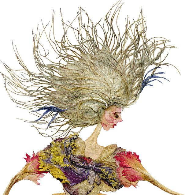 dried-floral-art-florotypie-elzbieta-wodala-5