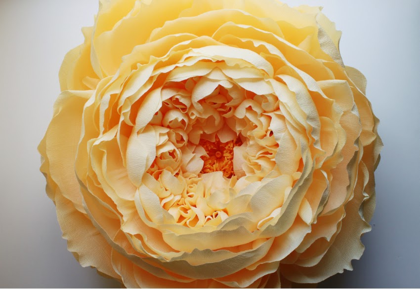 Giant Paper Flowers by Tiffanie Turner paper flowers