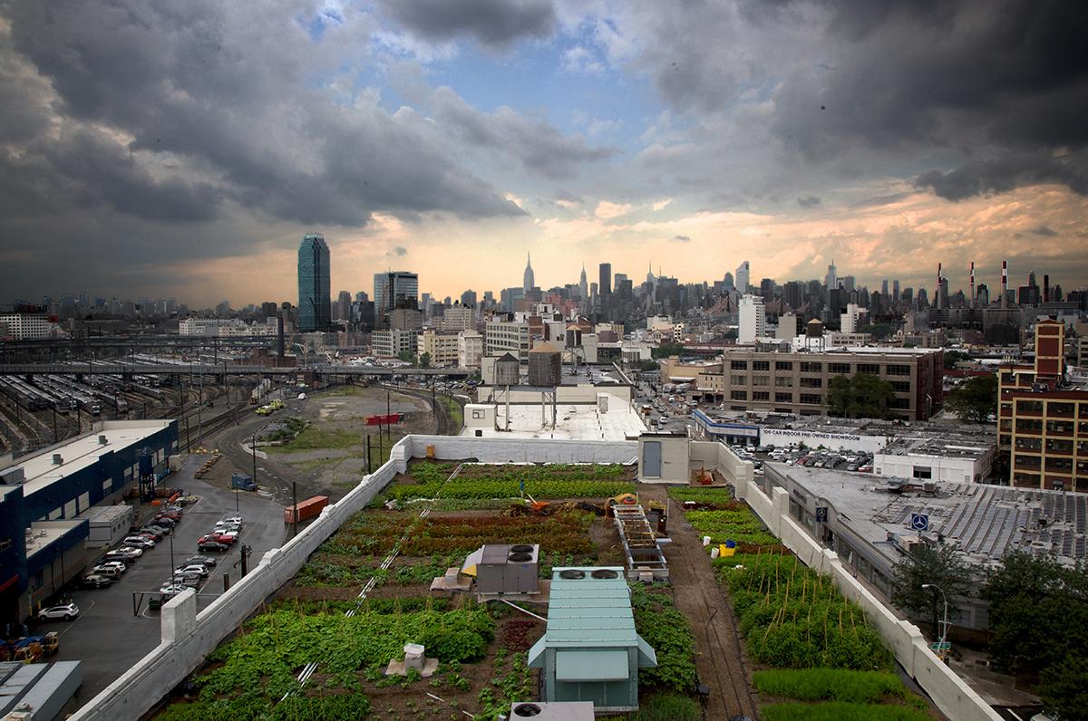 urbanfarm_newyork_04